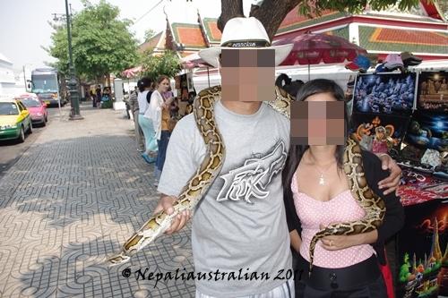 Loving the snake