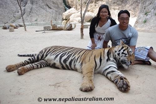 Thailand (8)