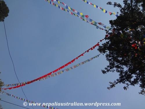 Swayambhu (30)