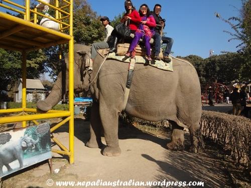 Kathmandu zoo