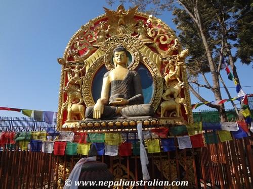 namo buddha  (16)