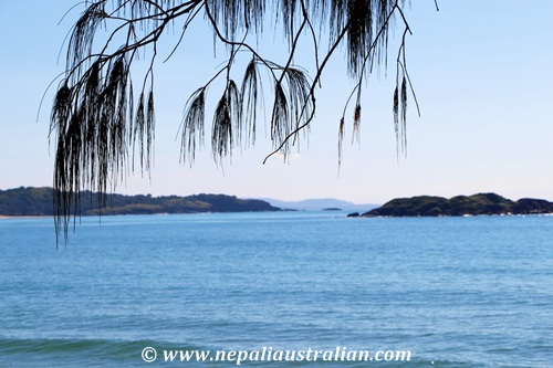 coffs harbour (6)