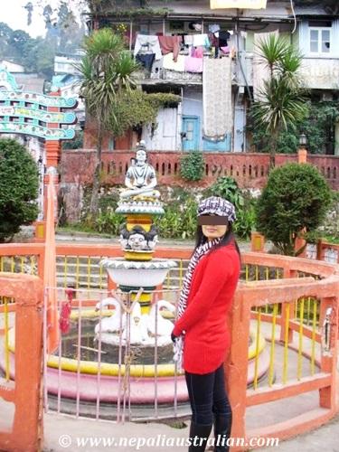 Darjeeling (6)
