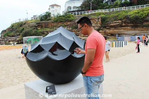 Sculpture by the sea (3)