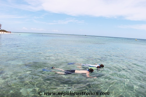 Amedee Island (15)