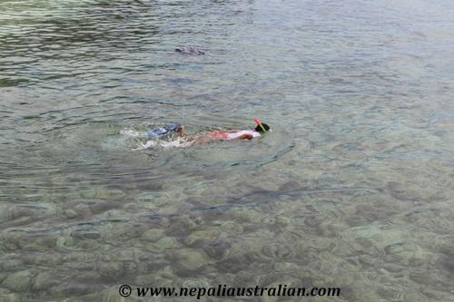 Amedee Island (21)