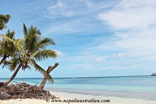 New Caledonia (10)