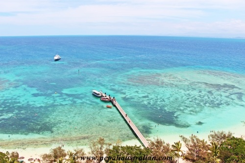 New Caledonia (11)