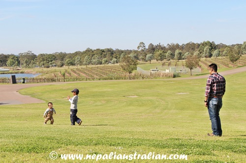 Hunter Valley (4)