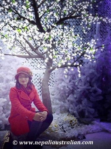 Sydney winter festival 2014 (2)