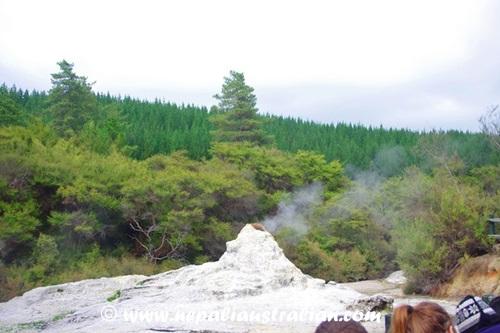 Rotorua and Wai-O-Tapu (26)