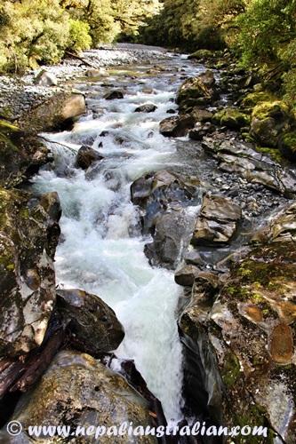 Milford Sound (10)