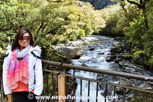 Milford Sound (11)
