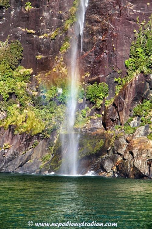 Milford Sound (18)