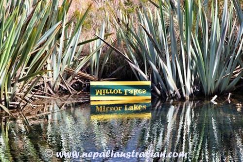 Milford Sound (3)