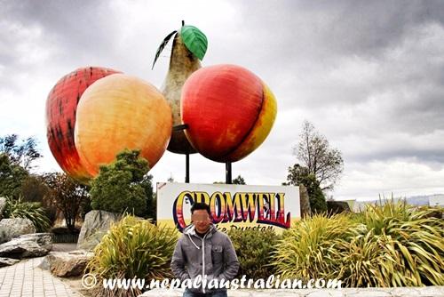 cromwell (1)