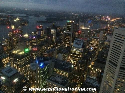 Sydney eye (4)