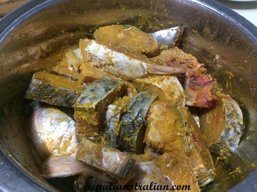 basa fish (2)