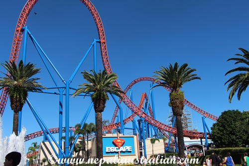 movie world (3)