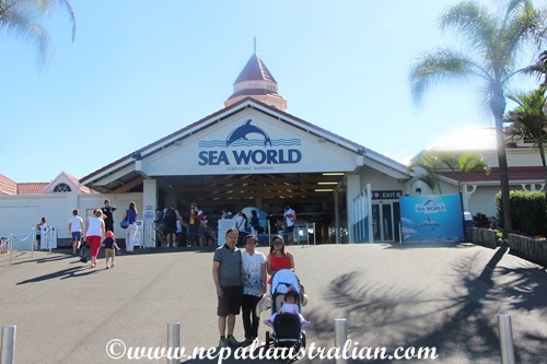 sea world (1)