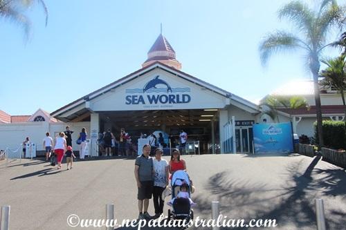 sea world (1)