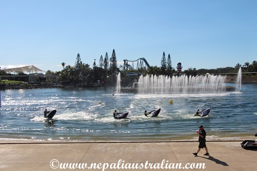 sea world (15)