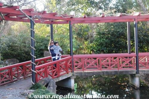 chinese-scholars-garden-3