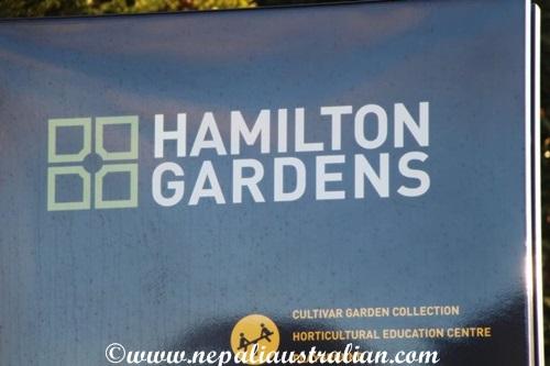 hamilton-gardens-2
