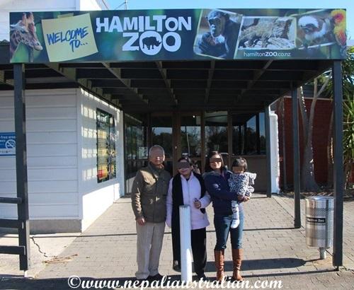 hamilton zoo (2)